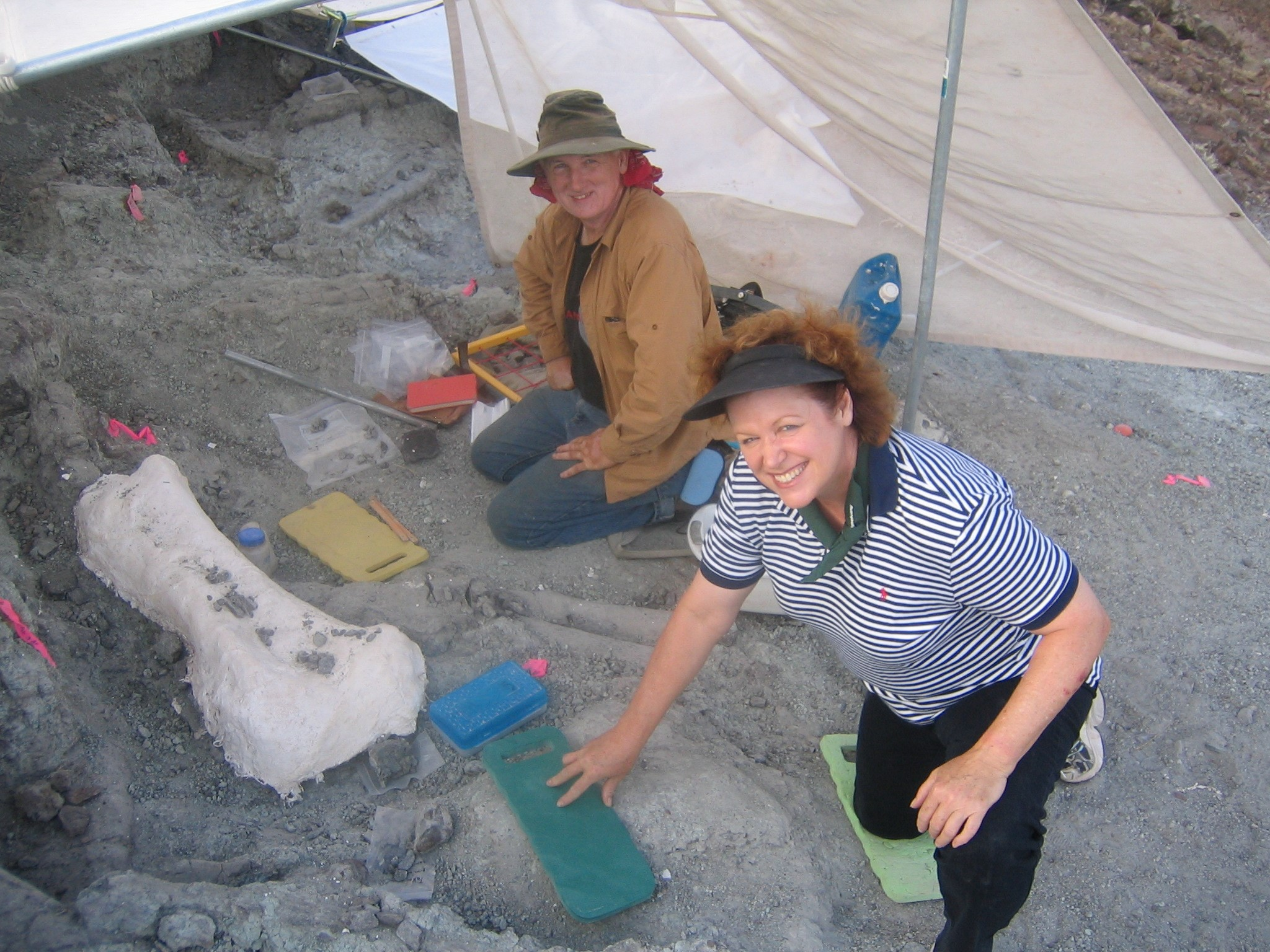 Janet and Michael digging for dinosaurs
